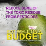 Reduce Pesticide Exposure